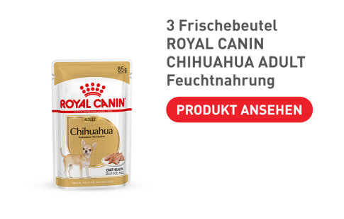Royal Canin Chihuahua Adult Nassfutter
