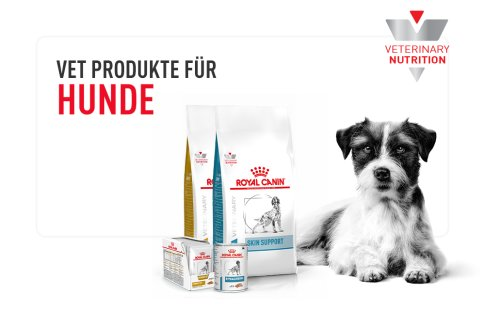Discover all vetenary products dogs Image