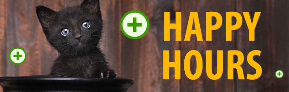 Happy Hours – 100 punktów gratis od 20:00 do 00:00