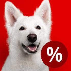 Zooplus har vår salg - Spesialtilbud for kjæledyr