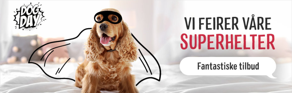 Zooplus tilbud på 10% rabatt på våtfôr til hunder