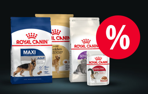 Save up to £10 on Royal Canin!*