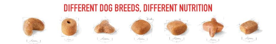 Discover Royal Canin Breed