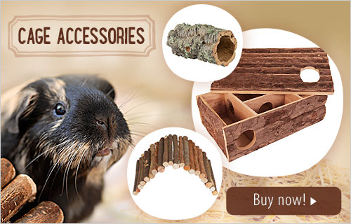 Small Pets Cage Accessories Incl Water And Food Accessories