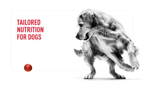 Dog Tailored Nutrition