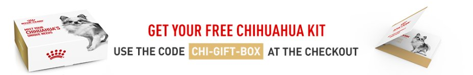 Get your FREE Royal Canin Chihuahua kit today