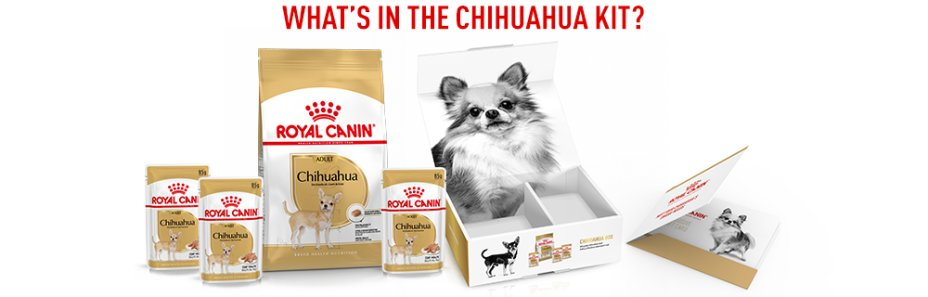 Here's what you'll find in the Chihuahua Box