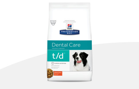hill's prescription diet dental care para cães