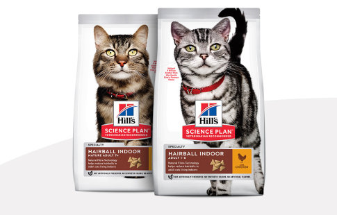 hill's science plan indoor & hairball para gatos