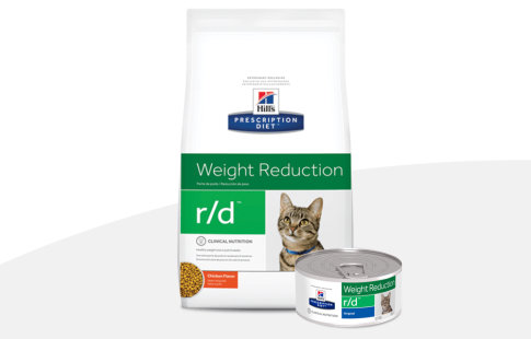hill's prescription diet metabolic para gatos