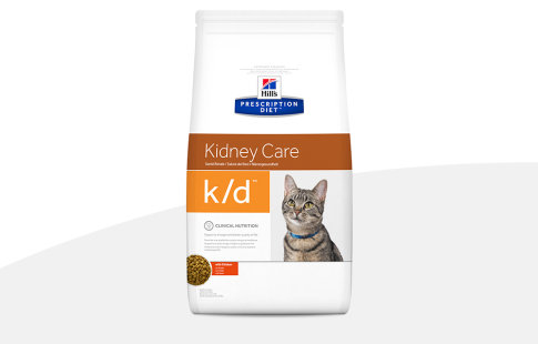 hill's prescription diet kidney care para gatos