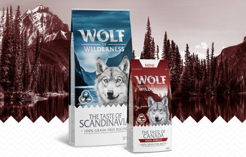 Wolf of Wilderness Taste of