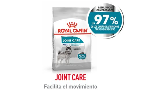 Royal Canin Canine Care Nutrition Joint Care