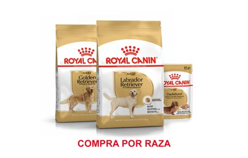 Royal Canin Breed perros