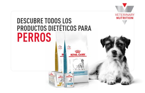 Royal Canin Veterinary Diets perros