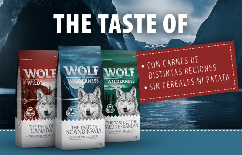 Pienso Wolf of Wilderness The Taste Of