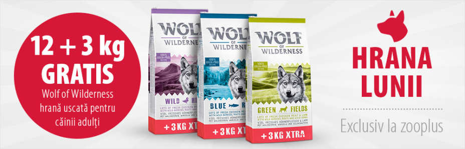12 + 3 kg gratis! 15 kg Wolf of Wilderness Adult