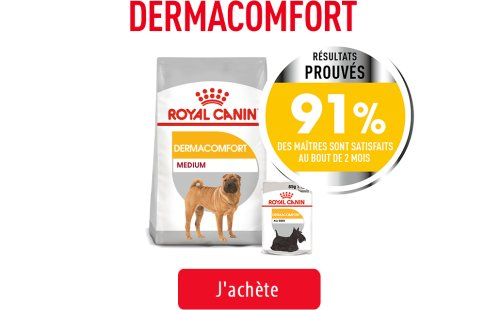Royal Canin Canine Care Subpage - Grid Dermacomfort Care Image