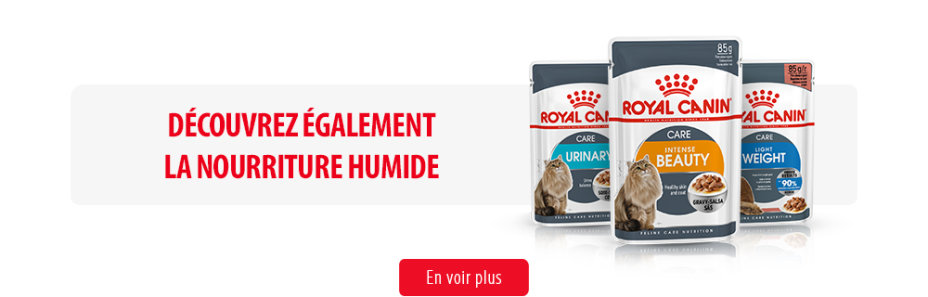 Royal Canin Feline Care Subpage - Middle Banner Humide Image
