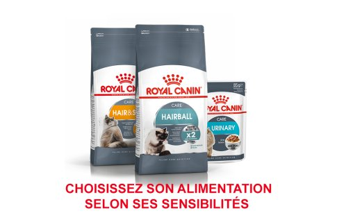 ROYAL CANIN BRAND PAGE - CAT Subpage - Grid Container - Product Line - Sensitivity image
