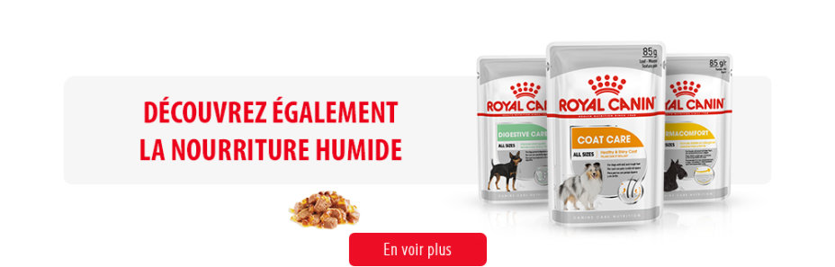 Royal Canin Canine Care Subpage - Middle banner humides Image