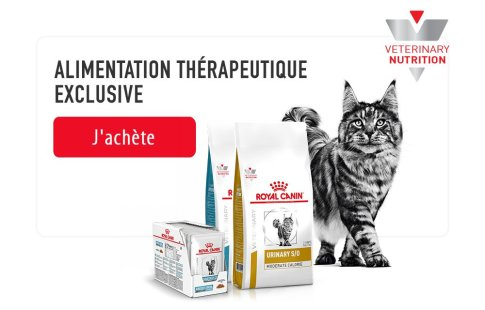 ROYAL CANIN BRAND PAGE - CAT Subpage - Picture Grid Container - Veterinary Diet image