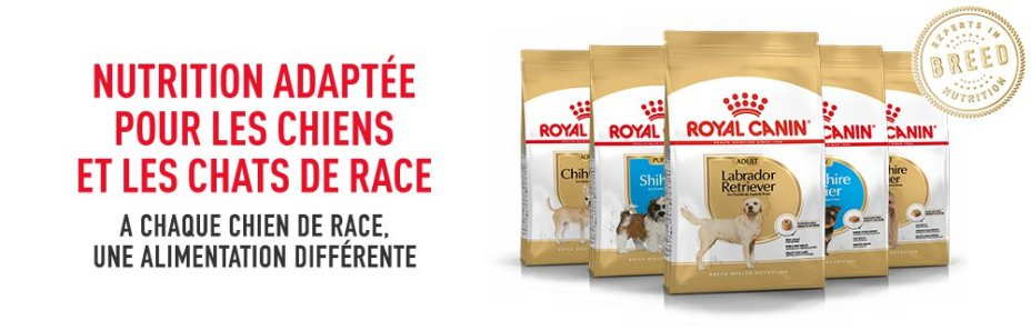 ROYAL CANIN BRAND PAGE - DOG Subpage - Middle banner Breed Nutrition image