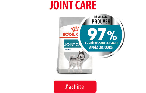 Royal Canin Canine Care Subpage - Joint Care Image