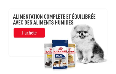 ROYAL CANIN BRAND PAGE - DOG Subpage - Picture Grid Container - Picture Grid item Royal Canin Top Marque image