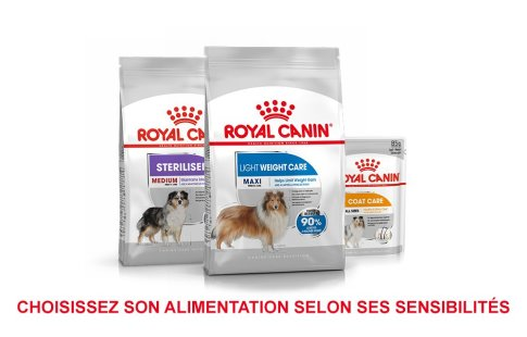 ROYAL CANIN BRAND PAGE - DOG Subpage - Grid Container - Sensitivity image