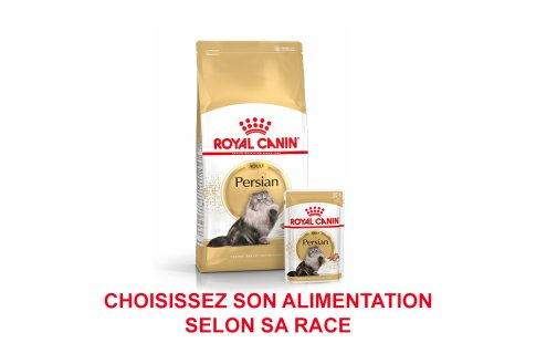 ROYAL CANIN BRAND PAGE - CAT Subpage - Grid Container - Product Line - Breed image