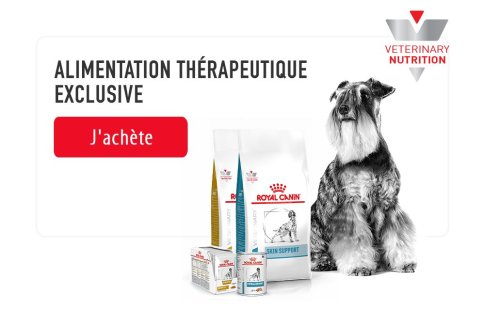 ROYAL CANIN BRAND PAGE - DOG Subpage - Picture Grid Container - Picture Grid item image