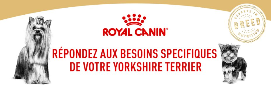 Votre box Royal Canin Yorkshire