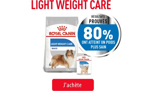 Royal Canin Canine Care Subpage - Light Weight Care Image
