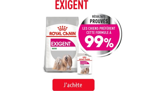 Royal Canin Canine Care Subpage - Grid Exigent Image