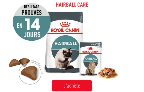 Royal Canin Feline Care Subpage - Grid Hairball Care Image