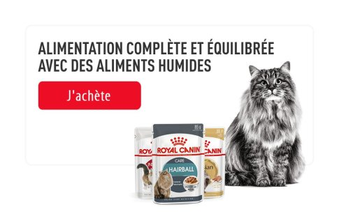 ROYAL CANIN BRAND PAGE - CAT Subpage - Picture Grid Container - RC Top Marque image