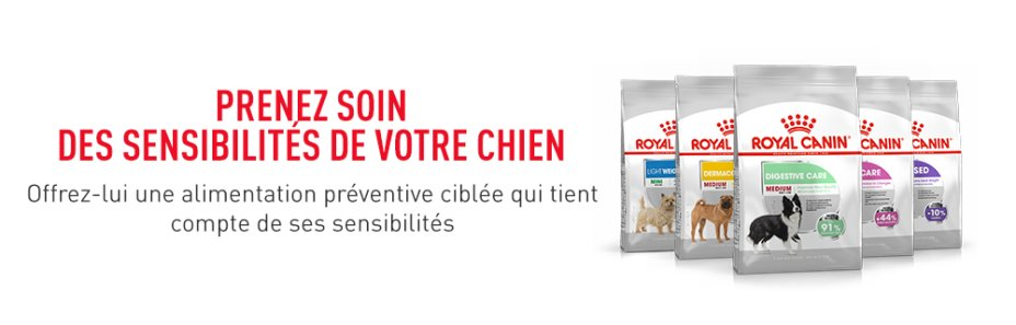 ROYAL CANIN BRAND PAGE - DOG Subpage - Middle banner Care Nutrition image