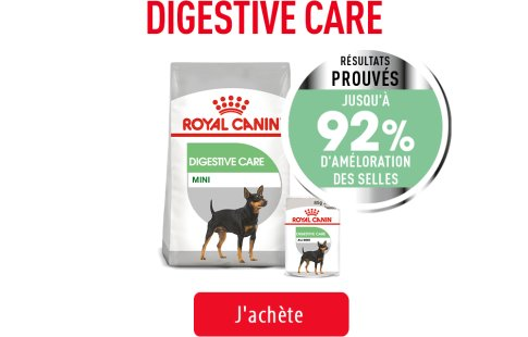 Royal Canin Canine Care Subpage - Grid Digestive Care Image