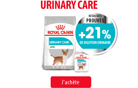 Royal Canin Canine Care Subpage - Grids Urinary Care Image