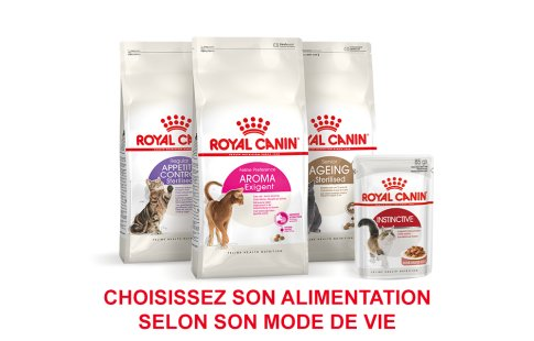 ROYAL CANIN BRAND PAGE - CAT Subpage - Grid Container - Product Line - Way of life image