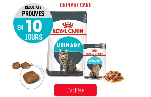 Royal Canin Feline Care Subpage - Grid Urinary Care Image