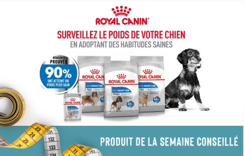 Royal canin - Chien