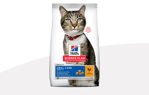 Hill's Science Plan Oral Care pour chat