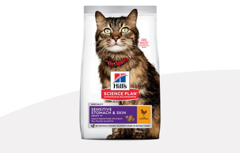 Hill's Science Plan Stomach & Skin pour chat