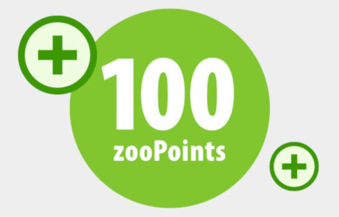 100 zooPoints
