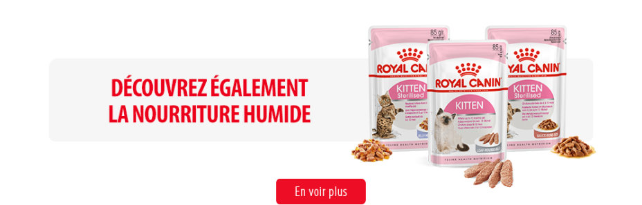 Royal Canin Kitten Subpage - Middle banner humides Image
