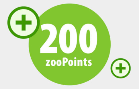 200 zooPoints