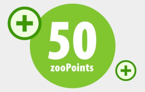 50 zoopoints