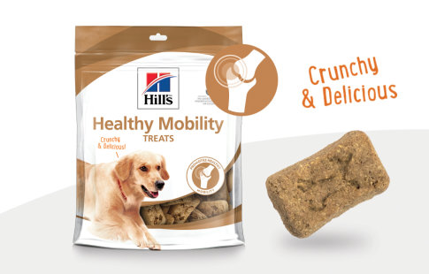Friandises Healthy Mobility